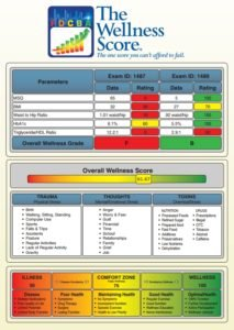 Your Wellness Score..